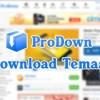 WPT ProDown Program İndirme Teması